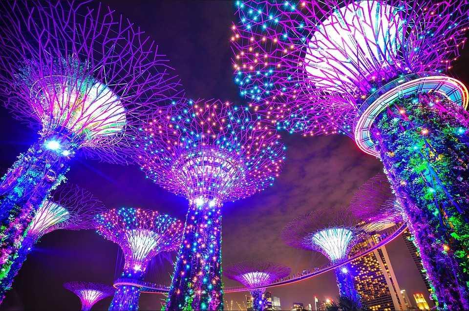 Рубрика: <span>Сингапур</span>